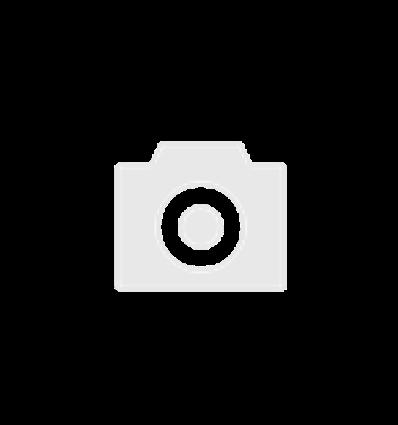 Ремкомплект антивибрационный для редуктора Tomasetto AT09 Nordic XP (мембрана газовая+винт регулировки давления)