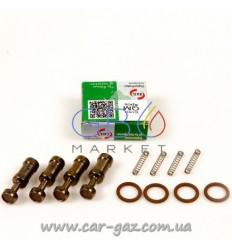 Ремкомплект до форсунок Tauris, Bravo, (Valtek) IG1 / IG2, (V-RING) (ціна за штуку, 4 штуки в упакува