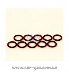 Резиновое кольцо к форсункам Rail