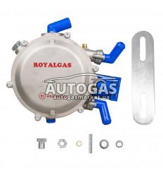 Редуктор ROYALGAS VR01 (пропан-бутан) 2-3-е пок., эл., 120 л.с. (90 кВт), вход D6 (M10x1), выход D19