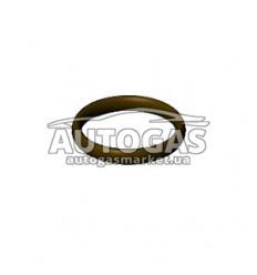 Кольцо уплотнительное резиновое корпуса сердечника ЭМК газа редуктора Bigas RI.23